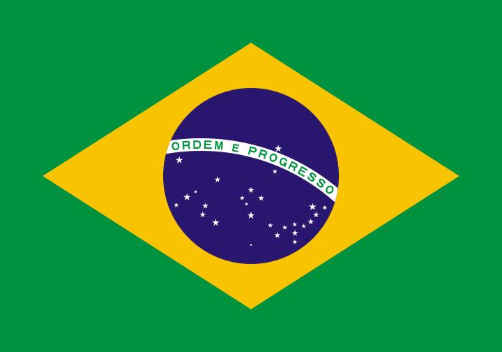 Полезна информация за Бразилия