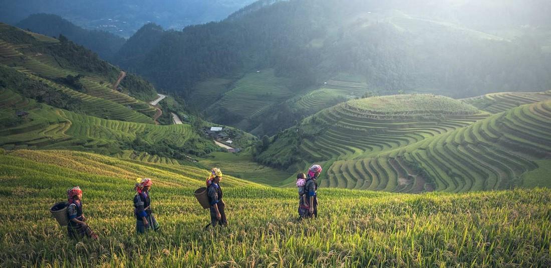 Бали - организирана група с водач 3