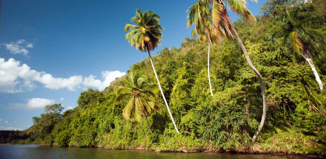 Доминикана - почивка