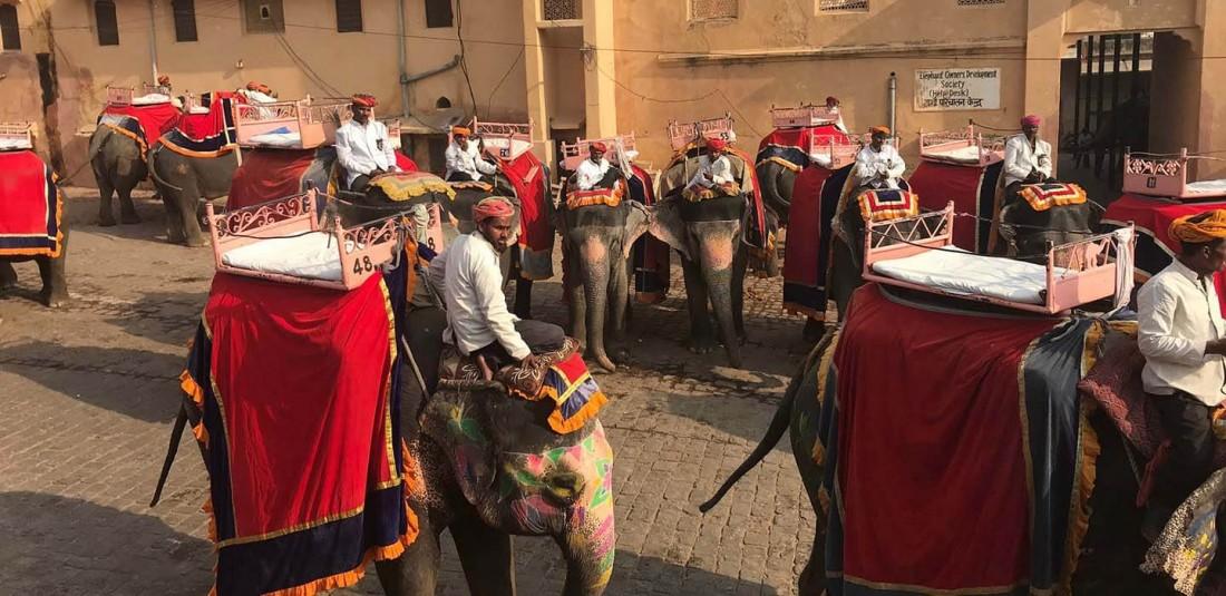 Индия - Фестивалът на цветовете 5