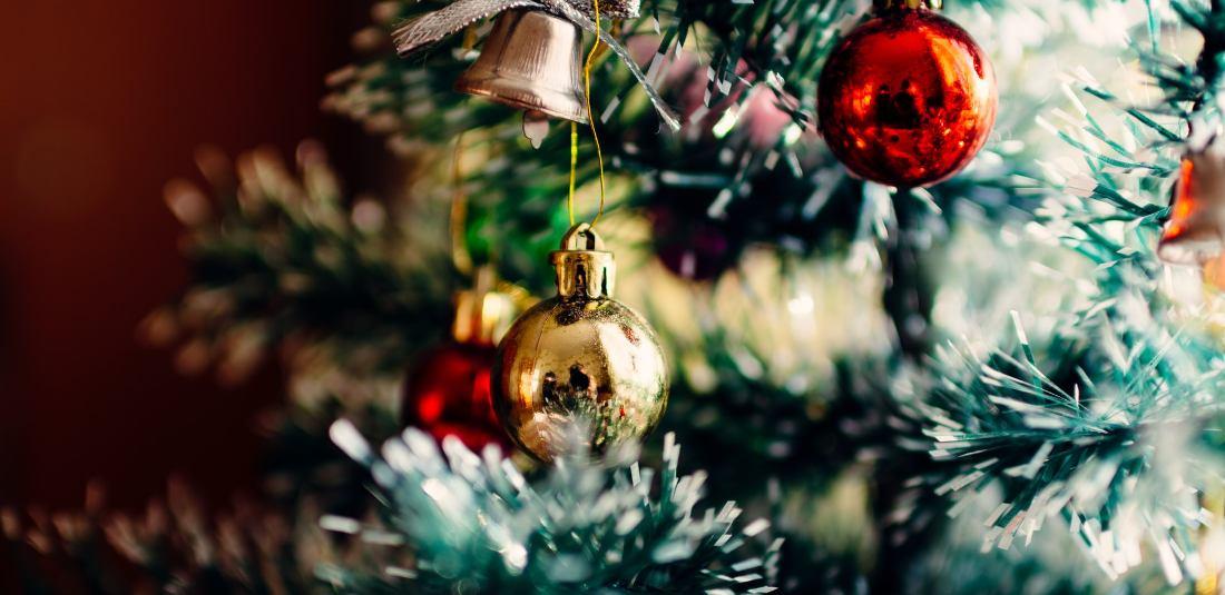 Коледа - Албания - от Варна, Шумен, Велико Търново и Плевен