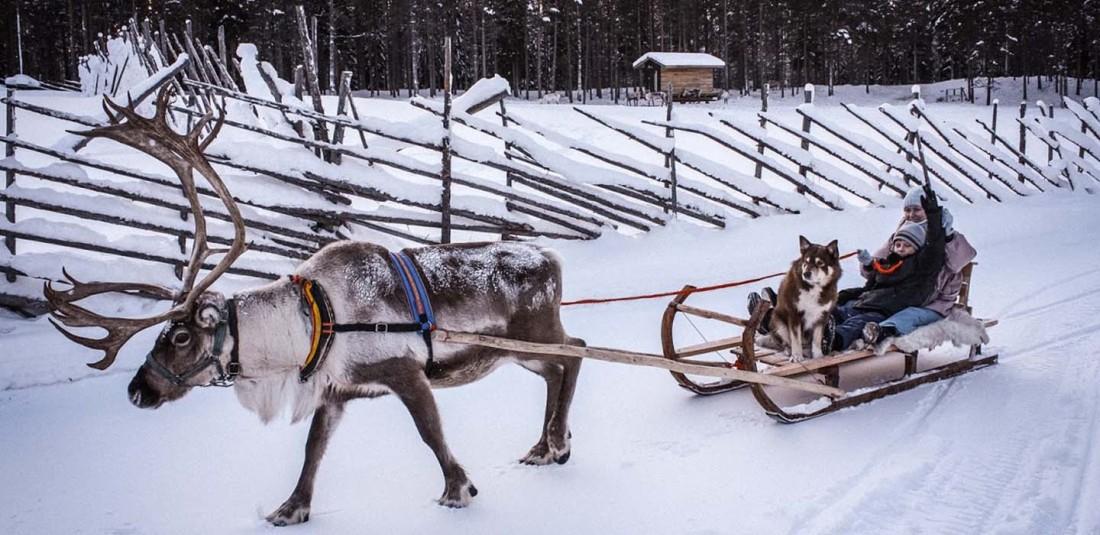 Нова година в Лапландия 2