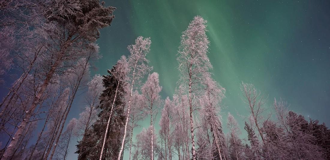 Нова година в Лапландия 5
