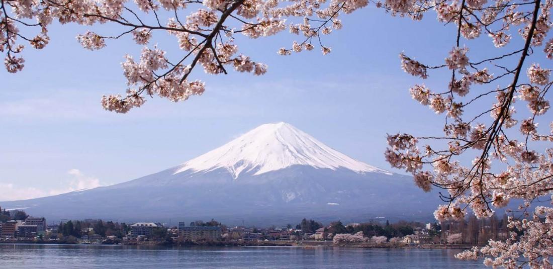 Япония в сезона на цъфтежа на вишните