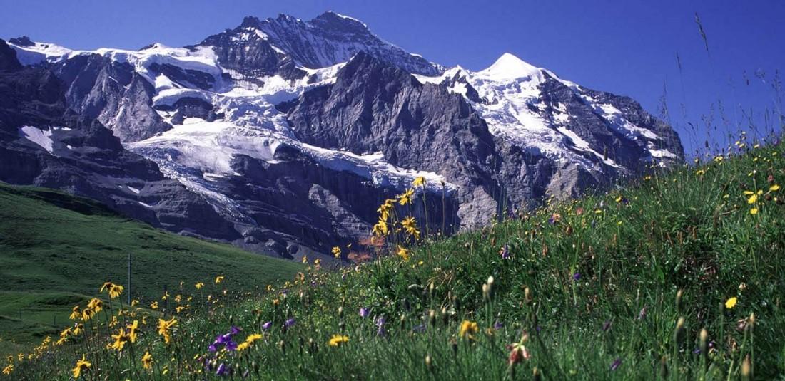 Юнгфрау и Матерхорн - най - атрактивните върхове на Швейцария